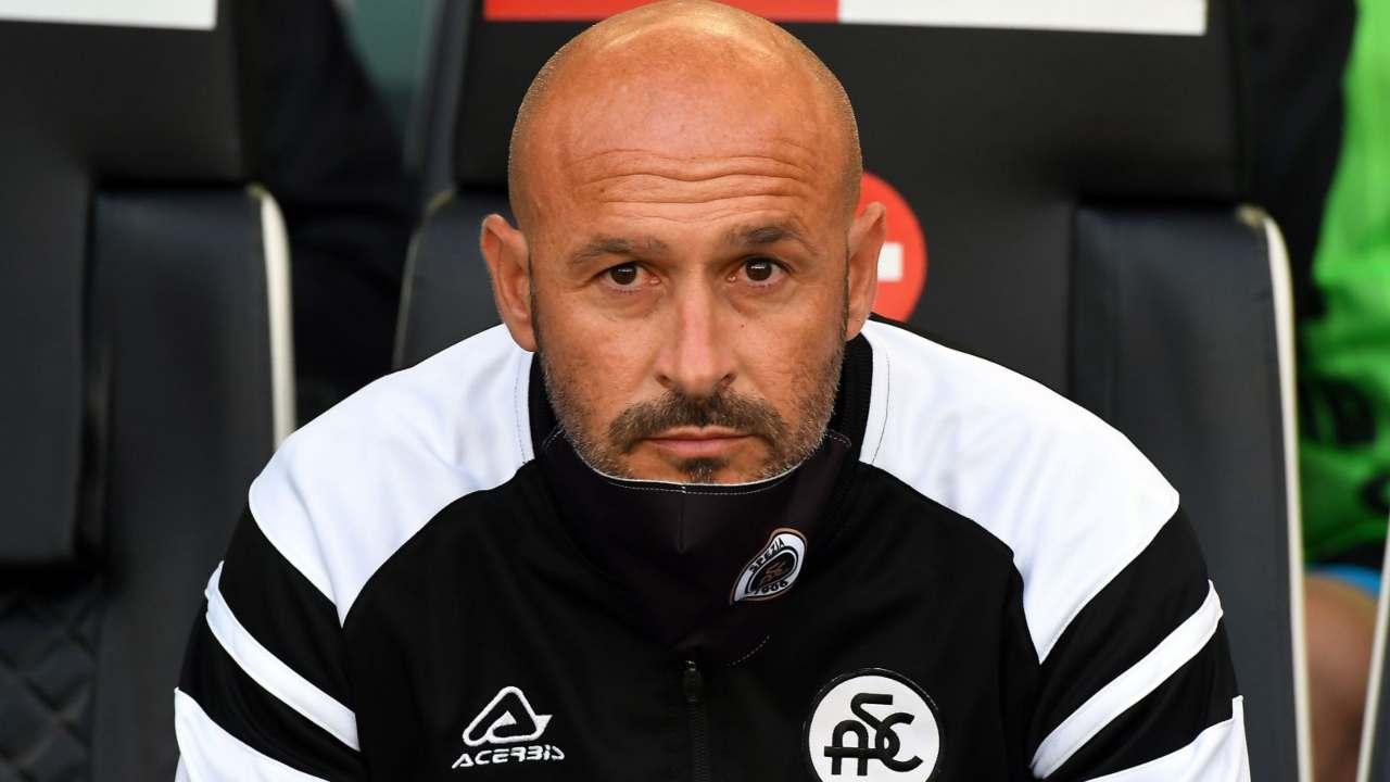 Spezia, l'allenatore Vincenzo Italiano a bordocampo (foto © Spezia)