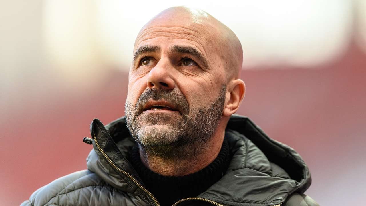 bosz bayer leverkusen young boys