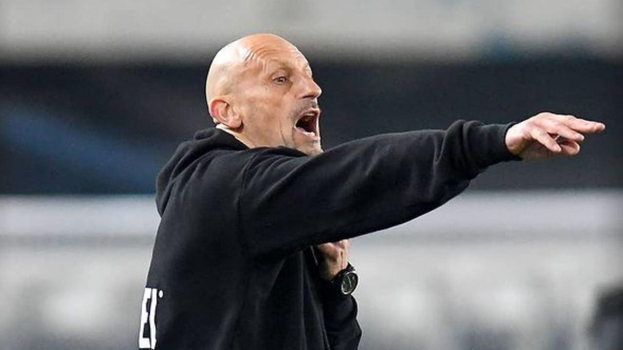 Vicenza, l'allenatore Domenico Di Carlo a bordocampo (foto © L.R. Vicenza)